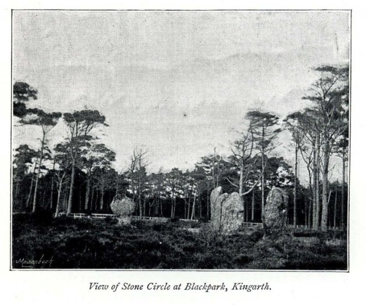 Photo of stones from 1893 SC1173030