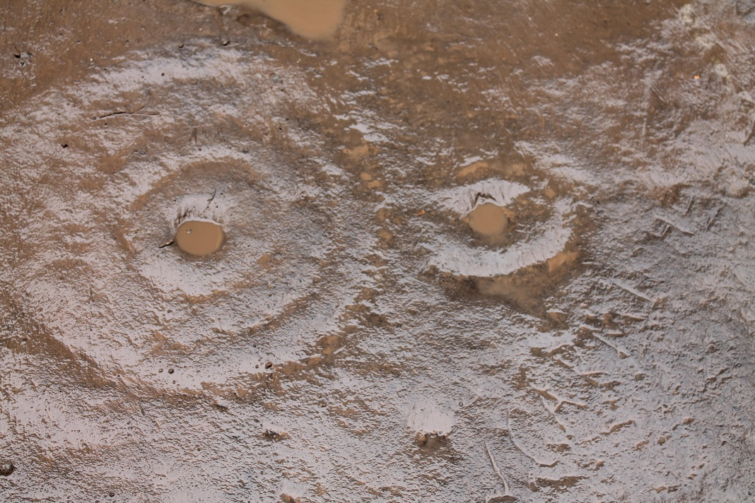 cup and ring marks low res