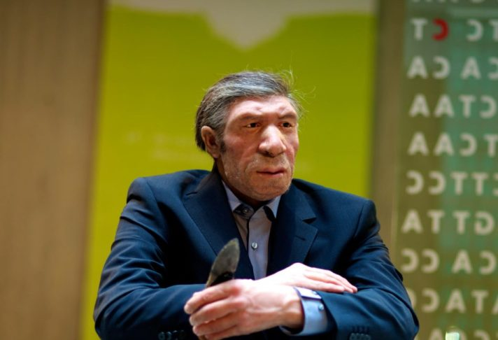 image_3629e-neanderthal-dna forbes